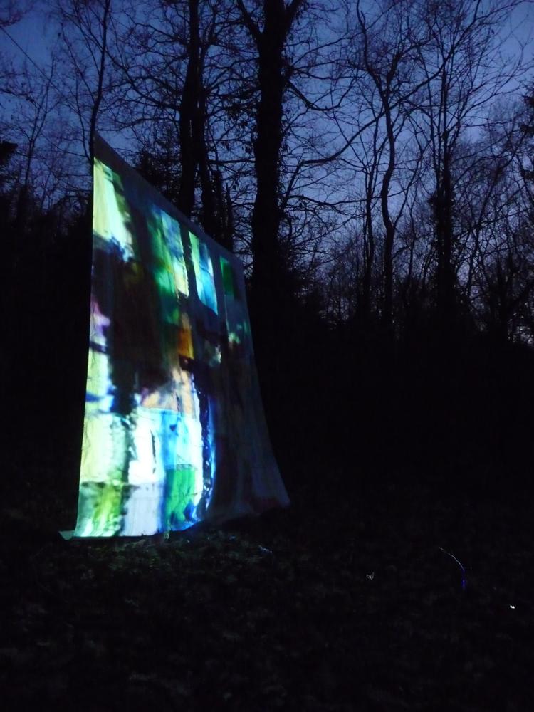 04 Nant-y-Gleisiad Woods